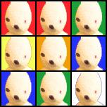 Una faccia del cubo di Pippubik